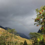 A view of Glencoe in autumn