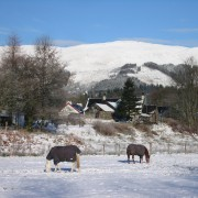 Winter at Riverbank Holiday Cottages, Glencoe